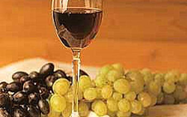 Jen 80,- Kč za celodenní ochutnávku nového Svatmartinského vína! Odzátkování proběhne 11. 11. v 11:00 Moravské vinotéce. Přijďte ochutnat 1. letošní mladé Svatomartinské víno. (sleva 50%)