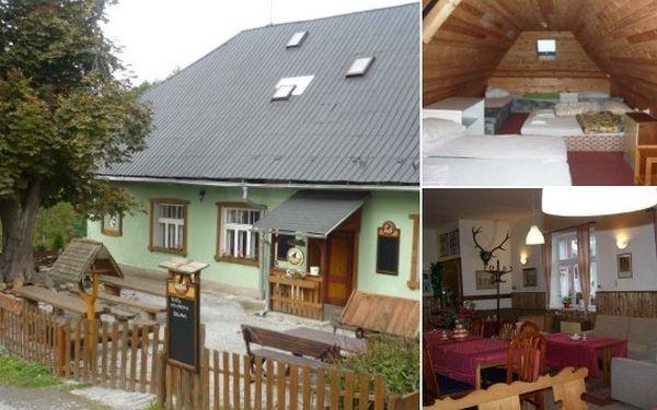 Pobyt s polopenzí pro 4 osoby v příjemném penzionu U Jelena v Jeseníkách za 2.208 Kč místo 3680 Kč. Sleva 40%