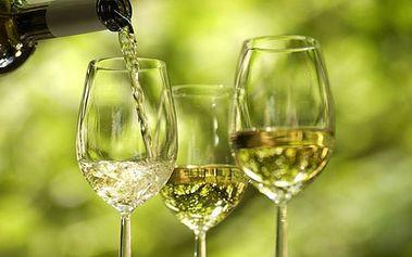 Objevte svěží víno z Francie s nádechem exotického ovoce jen za 110 Kč místo 290Kč!!!!