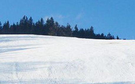 Užijte si zimu se vším co k tomu patří a vyražte si s kamarády nebo s celou rodinou užít zimních radovánek do lyžařského areálu Hartmanice! Připravili jsme pro vás tuto neuvěřitelnou nabídku. Bezkonkurenčních 180 Kč za celodenní skipas pro dospělého.