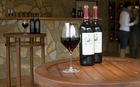 Nejlepší španělská, rakouská, německá a moravská vína z vinotéky Corrida se 40% slevou. Přijďte si vybrat z velké nabídky kvalitních vín, třeba na silvestrovskou oslavu. Za 299 Kč nakoupíte vína v hodnotě 500 Kč.