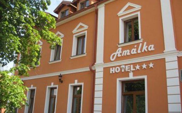 Zpříjemněte si zimu wellness pobytem na 2 noci pro 2 osoby v hotelu Amálka. Užijte si privátní vířivku nebo infra saunu, ledového šneka a solnou komoru. Vhodné i na Valentýna.