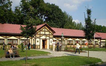 Exklusivní TŘÍDENNÍ lázeňský pobyt s PLNOU PENZÍ pro 2 OSOBY, součástí každé večeře je láhev vína, a VOUCHER v hodnotě 2.000 Kč na relaxační a regenerační procedury. Navštivte nejstarší vodoléčebný ústav v Čechách s báječnou slevou!