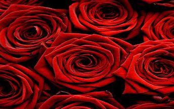 Krása je v jednoduchosti - darujte 15 růží k Valentýnu.