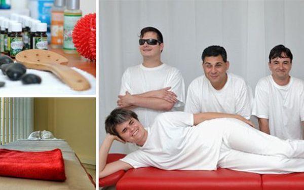 499 Kč za DVĚ unikátní masáže dle vlastního výběru v salonu nevidomých masérů. Úplně nový zážitek z poctivé masáže se slevou až 80 %.