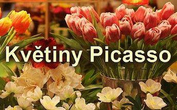 Květiny Picasso