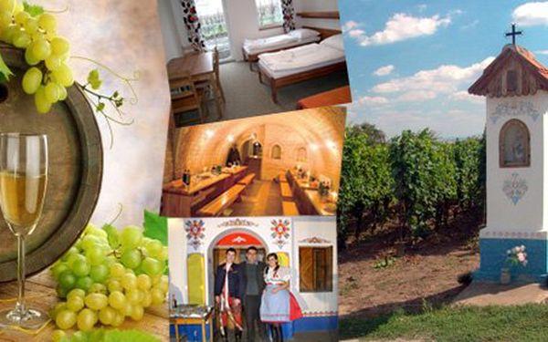 Vinné sklepy U Jeňoura