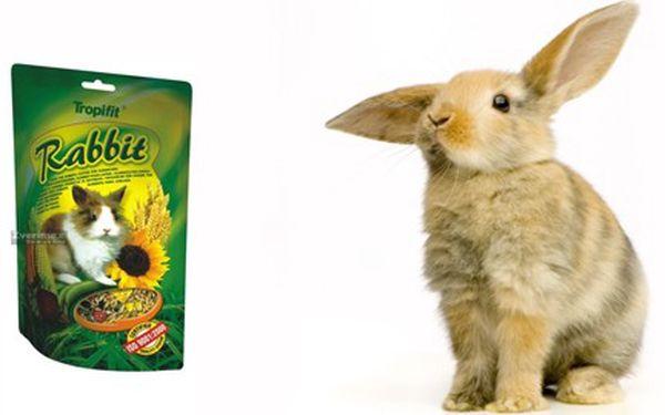 Velikonoční akce pro Vaše mazlíčky!!! Dopřejte svým drobným miláčkům čistý a voňavý pelíšek v podobě nové ekologické podestýlky + krmení pro jejich mlsné zoubky!