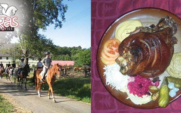 Projížďka na koni a pečené koleno v Děpoltovicích - Jen 275 Kč za 45ti minutovou projížďku na koni, pečené vepřové koleno s hořčicí a křenem a nápojem! Poznejte svět z koňského sedla a pak si pochutnejte na výborném pečeném koleni v jízdárně Pegas v Děpol