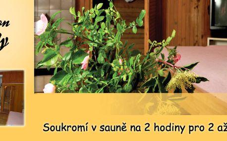 Relaxace a soukromí v sauně na 2 hodiny (max. 4 lidi) k dispozici TV, hudba i krb!