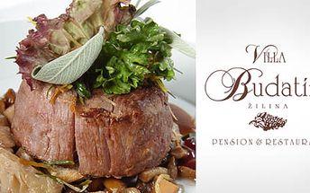 Romantická večera alebo užasný kulinársky zážitok pre 1 osobu len za 7,90€. Rozmaznávajte sa v krásnom prostredí Villy Budatín so zľavou 47%.