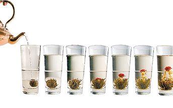 Dárkové balení pěti druhů květoucího čaje. Potěšte své blízké originálním dárkem pro deštivé večery!