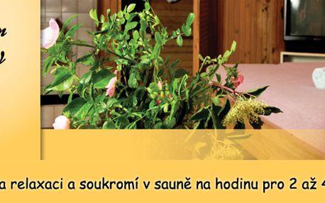 Privátní sauna s odpočívárnou, krbem, tv i rádiem pro 2 až 4 osoby!