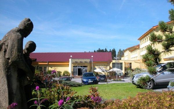 Třídenní pobyt Wellness&Spa pro DVA v hotelu Frymburk na břehu Lipna! Balíček ubytování se snídaní, neomezeným vstupem do aquaparku s vířivkou a fitness, vstupem do saunového světa, solné jeskyně a medovou masáží!
