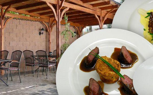 Specialita z jehněčího, nebo telecího masa a domácí jahodová zmrzlina s 59% slevou za pouhých 129 Kč! Pochutnejte si na profesionálně připraveném pokrmu v prostorách nekuřácké restaurace v Ústí nad Labem a ušetřete s námi 191 Kč!