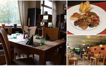 Úžasná nabídka! Za pouhých 155 Kč získejte talíř plný steaků a křidélek, podávaný s čerstvým zeleninovým salátem, hranolkami a červeným vínem. To vše s 57% slevou v luxusní restauraci Lavida!