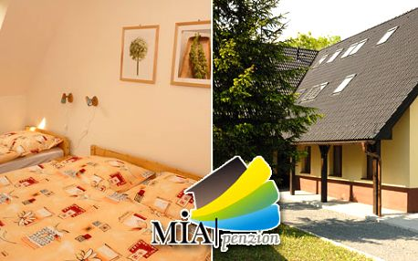 Ve dvou na hory! Poznejte Hrubý Jeseník díky pobytu v Penzionu Mia! 3 dny a 2 noci pro 2 v prostorném apartmánu horského penzionu obklopeni nádhernou přírodou nedaleko Pradědu.