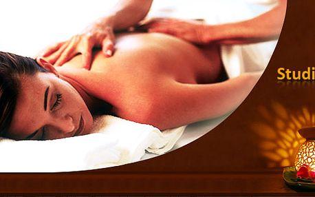 DVĚ HODINY plné relaxace!! Masáž celého těla z obou stran v příjemném Studiu Nane. Nahřátí v sauně ZDARMA a navíc teplý nápoj dle výběru v ceně! Přijďte ochutnat dokonalé uvolnění!