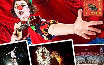 Zábavné a netradiční odpoledne s dětmi? Přece v cirkusu! Vstupenky na Turné Cirkusu Alex 2011 pro dítě nebo dospělého.