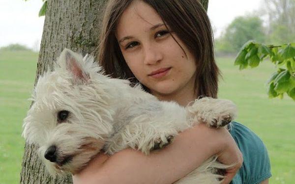 Novinka v programu Czech Dog Academy pro mladé pejskaře do 18 let. Trénink pro juniory. Vybrat si můžete ze široké nabídky nabízených tréninků jako jsou Agility začátečníci, Dogdance, Rodinny pes, Škola pro štěňátka, Mladý kynolog a Junior handling. Dopř