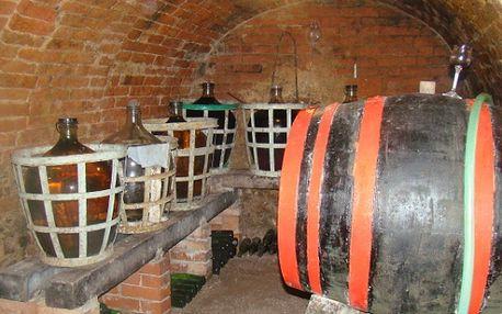 Romantika Jižní Moravy - 2 noci pro 2 os. s návštěvou sklípku a ochutnávkou vín