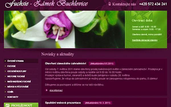 Jen 9100 Kč za tvorbu www stránek včetně redakčního systému. Kompletní webové stránky včetně administrace.