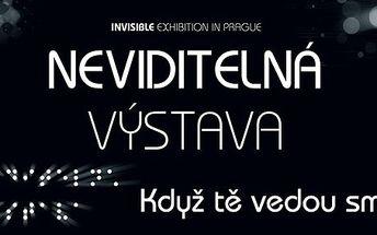 Neviditelná výstava