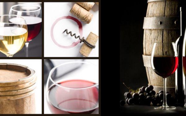 Jen u Starýho Výtoně dostanete 2x 2 dcl kvalitního Valtického vína za neuvěřitelných 28 Kč! Přijďte si vychutnat skvělé víno do pohodové kavárny na Rašínově nábřeží!