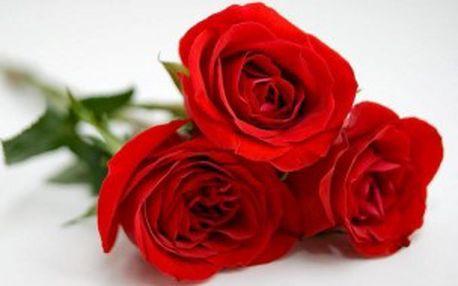 Jen 59 Kč za 3 překrásné růže nebo 599 Kč za kytici v hodnotě 1.500 Kč! Potěšte královnou květin s 60% primaslevou! Poukázka platí DO KONCE ROKU!