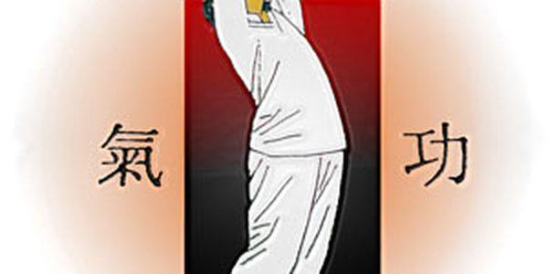 199 Kč za úvod do tai-chi a čchi-kung cvičení v přírodě v hodnotě 400 Kč