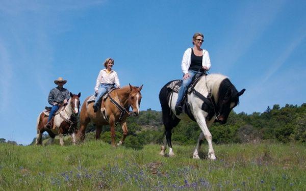 Jen 275 Kč za hodinovou jízdu na koni v krásné přírodě nedaleko Prahy + 15 minut teorie péče o koně! Ujeďte starostem všedního dne se slevou 50 %! Určeno pro úplné začátečníky i zkušené jezdce.