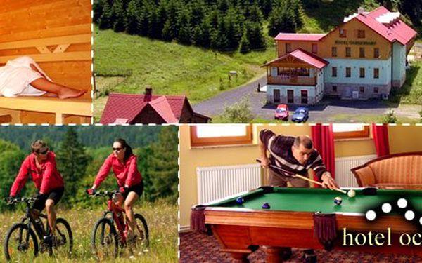 1699 Kč za tři dny pro DVA v hotelu Ochsendorf v Krušných horách. Sauna, whirlpool, tříchodová večeře. Ideální wellness a cyklodovolená. Sleva 56 %.