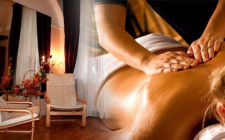 534 Kč za relaxační masáž dle Vašeho výběru v délce 60 minut. Vyberte si vlastní způsob odpočinku a my Vám poskytneme ty nejkvalitnější služby!