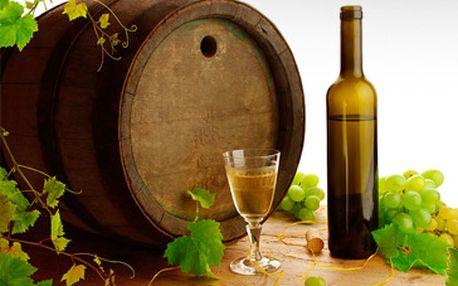 Pouhých 229 Kč za 3 láhve prvotřídního vína (bílé i červené). Výběr mezi několika značkami. Ryzlink rýnský, rulandské bílé, modrý Portugal, zweigeltrebe, andré, tramín červený a další... Pravé moravské víno od certifikovaného vinaře. Sleva 50%