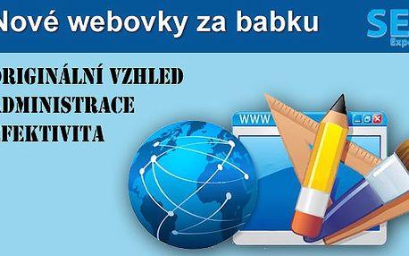 Svěřte své WWW profesionálům. Vaše nové atraktivní webové stránky s možností změny barvy designu do 3 dnů.