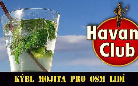 Pravé kubánské mojito pro osm lidí. Vyměňte nervy v kýblu za kýbl mojita. : )