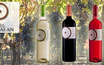 SADA 3 LAHVÍ KVALITNÍHO VÍNA!!! Výběr chilských vín z vinařství Chocalan, ideální k letnímu osvěžení či grilování s 50% slevou! Dopřejte si luxusní letní osvěžení!