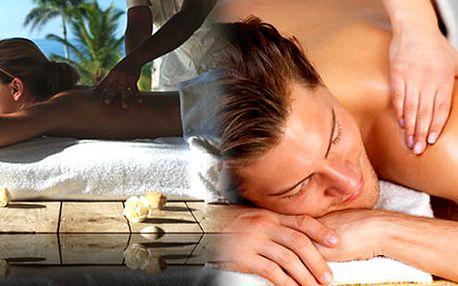 Uvolněte tělo i mysl po náročném dni a dopřejte si hodinovou masáž dle vlastního výběru. Zbavíte se bolestí zad nebo si jen odpočinete při bylinné masáži vonnými oleji.