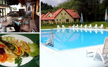 Celodenní vstup do bazénu Březová + pstruh na másle - Přijďte si užít spoustu letní zábavy do areálu s moderním bazénem pod širým nebem, parádní odpočinkovou zónou s lehátky a slunečníky zdarma, tenisovými kurty a dětským hřištěm. K obědu či večeři se můžete těšit na křupavého pstruha na másle či česneku s vaší oblíbenou přílohou!