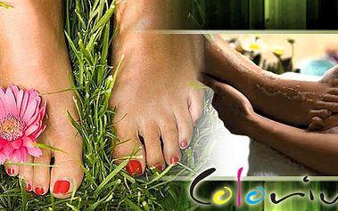 Mokrá pedikůra, diagnostika na plosce nohy, reflex. masáž kombinovaná s klasickou až po kolena. Dopřejte si to nádherné uvolnění a relaxaci, která Vám dodá novou sílu!