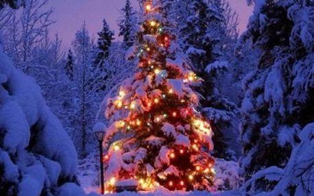 Vánoční wellness pobyt 26.12.-29.12.2011