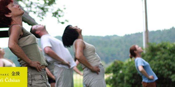 300 Kč za letní seminář Tchaj-ťi ve Stromovce v původní hodnotě 600 Kč