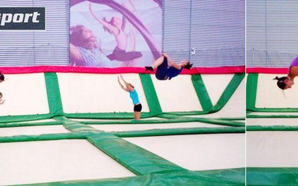 40 Kč za DVA 15minutové vstupy na GIGA trampolínu. Zábava pro dospělé i děti na 210 m². Dovádějte pro radost i zdraví s 50% slevou!