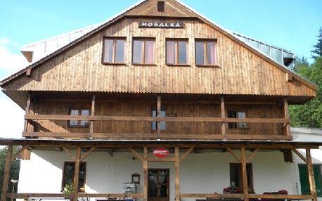 Prodloužený 4-denní pobyt pro 2 osoby včetně polopenze v krásné přírodě Krkonoš PENSIONU HORALKA + DÁREK !