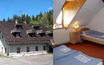 Kouzelná ŠUMAVA za 390,- Kč / osoba / noc s POLOPENZÍ v srdci Kašperských hor. Užijte si relax v horském hotelu Popelná, který leží u Losenického potoka na samotě v krásném údolí v nadmořské výšce 870 metrů.