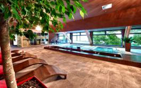 Svět luxusu dostupný pro každého!!!! Skvělá nabídka !!!! Pobyt na 3 dny (2 noci) pro dvě osoby za 3850,- Kč v nově otevřeném hotelu Holiday Inn Trnava s bohatou polopenzí, která uspokojí každého gurmána!!! Volný vstup do wellness centra!!!