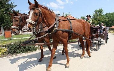 Úžasné 3 dni pre 2 osoby v spoločnosti koní na Ranči u BOBIHO. Vychutnajte si jazdu na koni aj na koči, ukážte deťom domácu ZOO. Pochutnajte si na domácich špecialitách a relaxujte vo wellness so zľavou až 51%!
