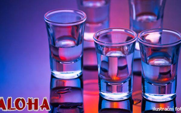 139 Kč (běžná cena 280 Kč) za skvělou jízdu v centru Brna - 2 Red Bully Sugarfree a 4 poctivé panáky vodky nastartují vaši noc v Aloha baru!