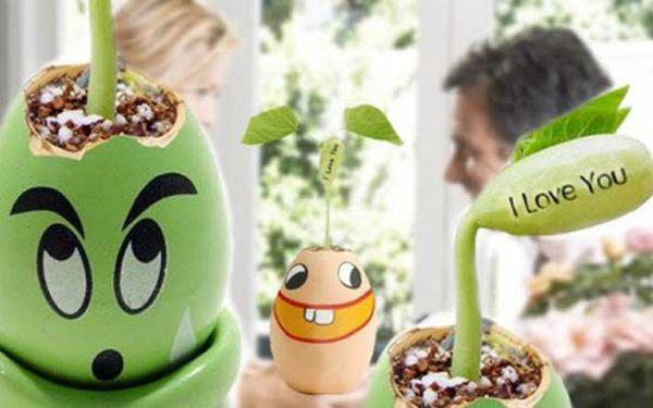 """Překvapte svého miláčka originálním dárkem se slevou 71%! Vajíčko lásky s fazolkou """"I Love You"""" nyní za pouhých 99 Kč! Vypěstujte si společně svou rostlinku lásky!"""