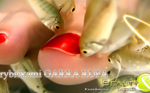 180 Kč za 30 minut netradiční pedikúry Garra Rufa v původní hodnotě 280 Kč
